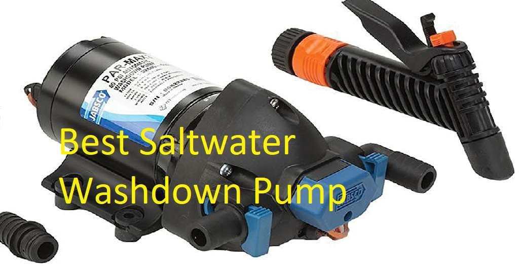 Best Saltwater Washdown Pump